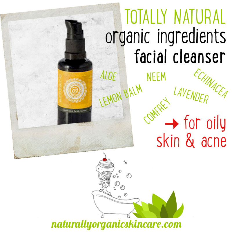natural organic facial cleanser citrus mint annmarie gianni skin care
